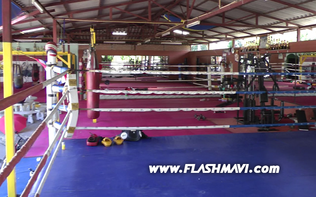 Muay Thai Training in Chiang Mai - The Gym